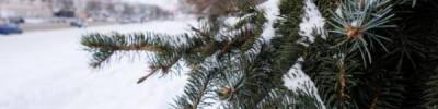 Жителей Москвы предупредили о сильном снегопаде 18 декабря