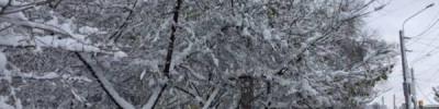 Москвичей предупредили о снегопаде и гололедице