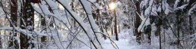 Долгосрочный прогноз погоды на январь 2018 г.