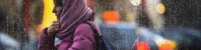 МЧС предупредило о сильном ветре и гололедице в Москве