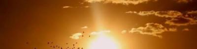 В Санкт-Петербурге появились «световые столбы»