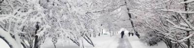 Снег в Москве растает не раньше второй декады апреля — синоптики