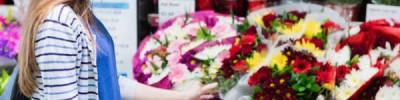 Букет-долгожитель. Как покупать цветы и ухаживать за ними