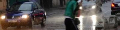 Москвичей в выходные ожидают похолодание и грозовые дожди