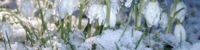 На Амурскую область обрушился сильный снегопад