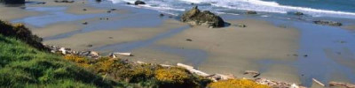 Землетрясение магнитудой 6,3 произошло у берегов США