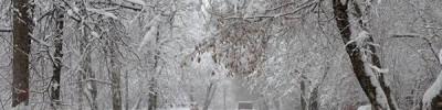 В ночь на четверг в Москве ожидается сильный снегопад