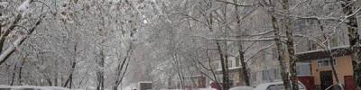 Синоптики рассказали, какая погода ожидает жителей Москвы в новогоднюю ночь