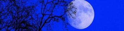Россияне 21 января смогут увидеть лунное затмение