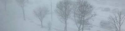 МЧС предупредило москвичей об усилении ветра и метели