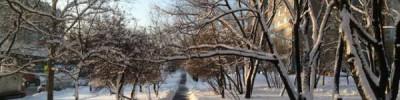 В пятницу в Москве возможен небольшой снег