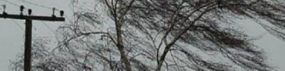 В Москве на 15 февраля объявлен желтый уровень погодной опасности