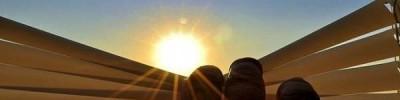 Ученые выяснили, каким будет лето в конце столетия