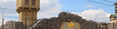 В Московском зоопарке родился детеныш львинохвостого макака