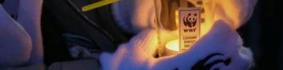 ВЦИОМ: Более половины россиян знают об акции «Час Земли»
