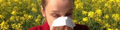 Синоптики предупредили о неблагоприятной для аллергиков погоде в Москве