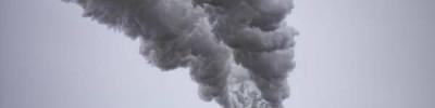 В WWF рассказали, как россияне помогают природе