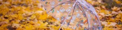 В Роскачестве рассказали, как выбрать хороший зонт