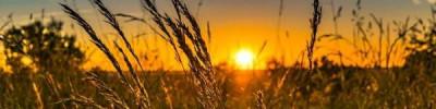 28 июля в Москве станет последним жарким днем перед похолоданием