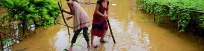 СМИ сообщили, что в Индии более 2,6 млн человек находятся в зоне наводнения