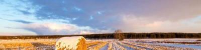Гололедица и до двух градусов мороза ожидаются в Москве 9 февраля