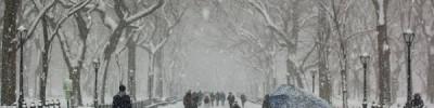 Мокрый снег и гололедица ожидаются в Москве 28 января