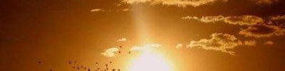 Жителей Японии встревожило падение метеора