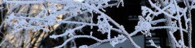 В ночь на 28 февраля в Подмосковье ожидаются 30-градусные морозы