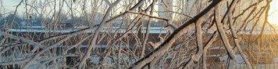 В Москве зафиксирована самая низкая температура с начала зимы