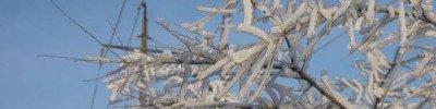 Морозы до минус 22 градусов ожидаются в Подмосковье ночью в выходные