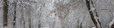 Снегопад в Москве 4 марта может стать самым мощным за последние 68 лет