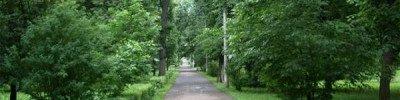 Собянин: Москва — самый зеленый мегаполис планеты
