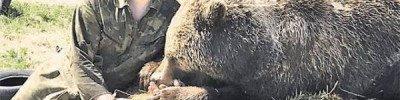 Крылья для медвежонка. Как сегодня живёт косолапый, спасённый лётчиками?