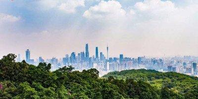 10 часов полета. Как добраться до китайского Города цветов?
