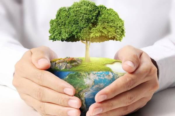 Фото Полезные производства. Как предприятия ТЭК заботятся об экологии