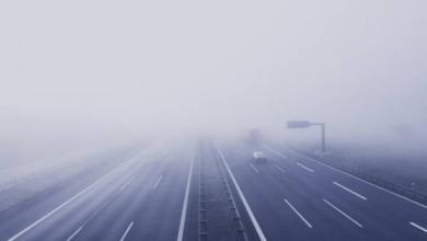 Фото МЧС предупредило о тумане в Москве