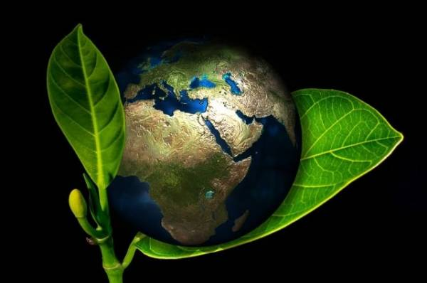 Фото Экономика будет «зеленой»? Итоги Года экологии обсудят на «ЭКОТЕХ'17»