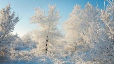 Фото На Колыме из-за 50-градусных морозов отменили занятия в школах