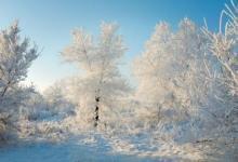 Фото На Москву надвигаются морозы до минус 17 градусов