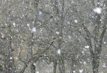Фото Алтайские синоптики опровергли сообщения о 62-градусном морозе