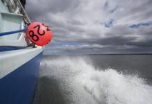 Фото После землетрясения у берегов Аляски объявлена угроза цунами