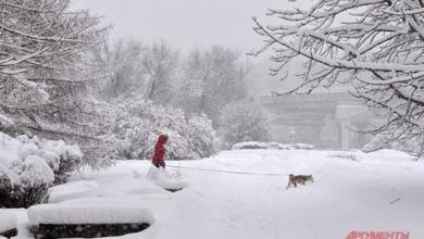 Фото В Москве норма по снегу этой зимой перевыполнена более чем в 1,5 раза
