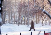 Фото МЧС предупредило об аномальных морозах в Москве