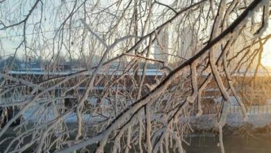 Фото В Москве зафиксирована самая низкая температура с начала зимы