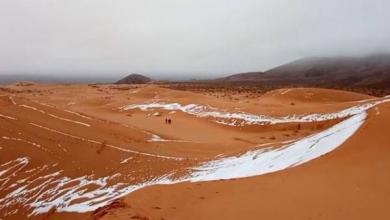 Фото В пустыне Сахара второй раз с начала года выпал снег