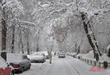 Фото Синоптики предупредили о сильном снегопаде в Москве на выходные