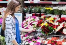 Photo of Букет-долгожитель. Как покупать цветы и ухаживать за ними
