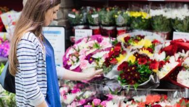 Фото Букет-долгожитель. Как покупать цветы и ухаживать за ними