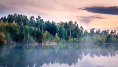 Фото Гранты для студентов. Начался экологический квест «Вода России»
