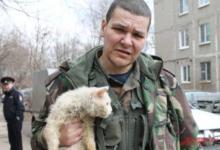 Photo of Скорая помощь для животных: один день из жизни ее работника